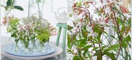 Creatief met zomerbloemen