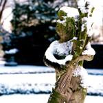 Dwalen door een magische winterwondertuin - Copyright © Brosisprod.nl