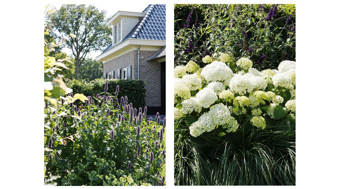 39 buytengewoon 39 mooie tuin wonen interieur lifestyle decoratie brosisprod - Tuin fotos ...